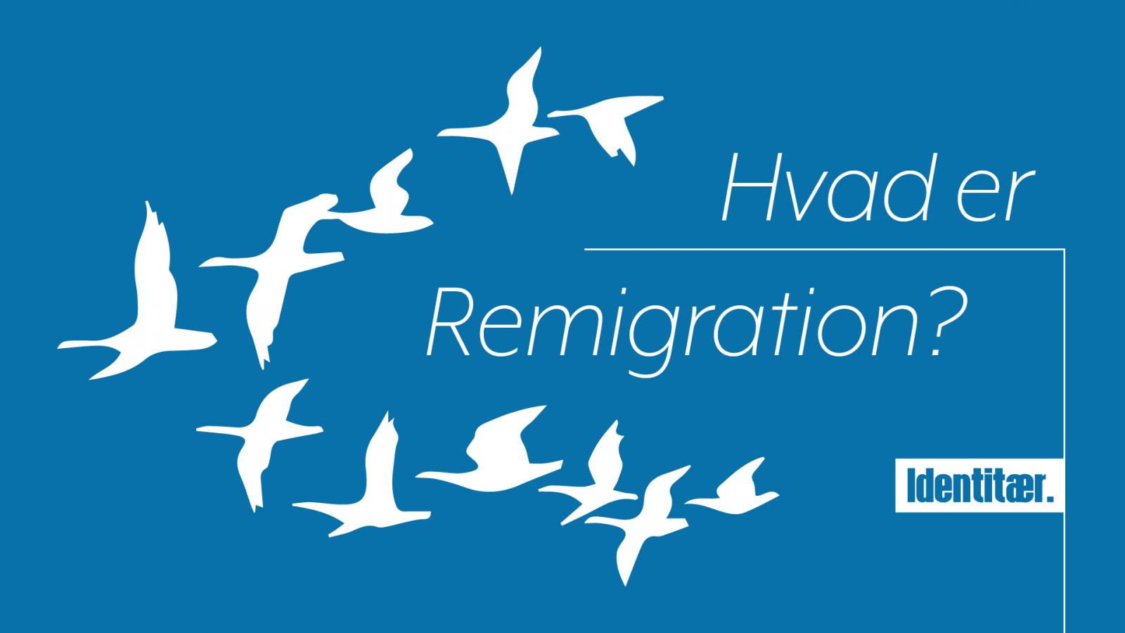 Hvad er remigration?